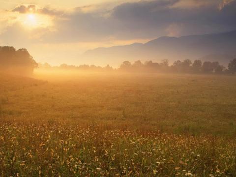 Оценка земельных участков и земли под ИЖД